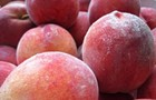 Why are farmers' market peaches so fuzzy?