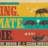 Seventeen-Year Itch: Cicada Swarm 2013