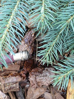 A trickle of water for several hours or more works well for tree root systems. - LARRY DECKER