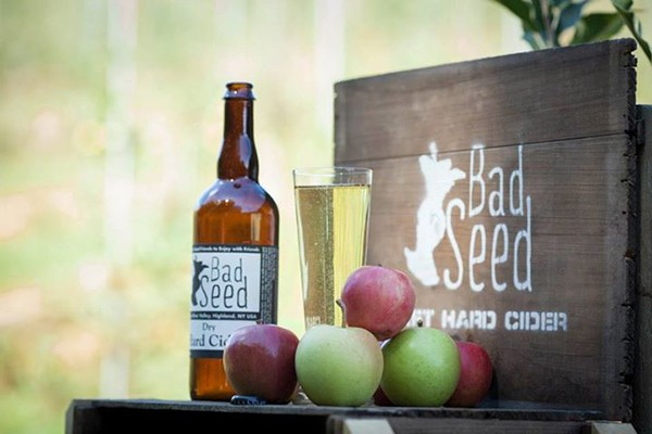 bad_seed_cider_house_2.jpg