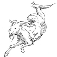 Capricorn for June 2015