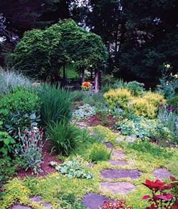 Designer Teri Condon's garden in Highland.