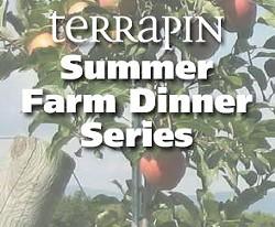 1613c6e5_summer-farm-dinner-series-square.jpg