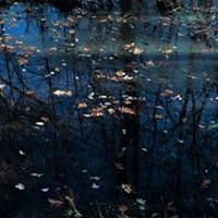 "Robin Dana's ""Watershed"" Series From ""Watershed"" Robin Dana"