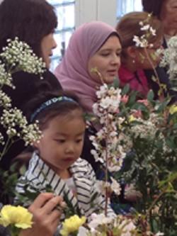 e9d29ef7_cherry_blossom_web.jpg