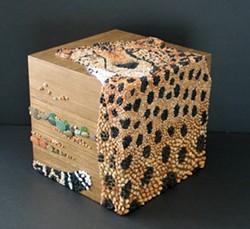 d34343b4_cheetahbox1.jpg