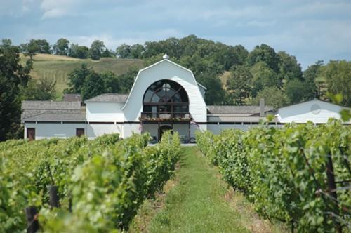 winerywvines09b.jpg
