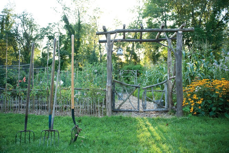Lee Reich's no-till vegetable garden. Garden beds have one to two inches of mulch and compost added per year and are never dug or compacted. - JENNIFER MAY