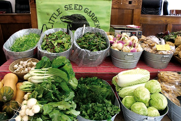 Little Seed Gardens' display at Rhinebeck Farmers' Market.