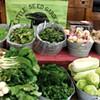 2013 Farmers' Market Guide