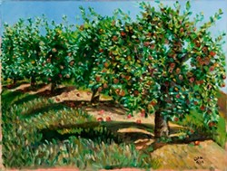 a6a08572_youmans_apple_orchard_400x302_.jpg