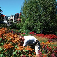 Horticulture Lessons from Mohonk