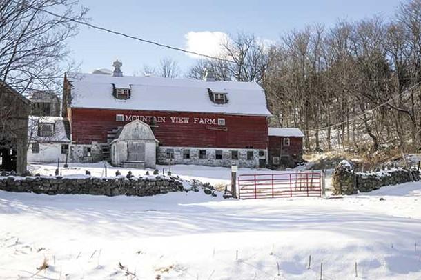 Mountain View Farm in Chester. - DAVID MORRIS CUNNINGHAM