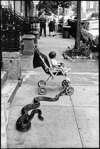 New York City, 1985, Leonard Freed