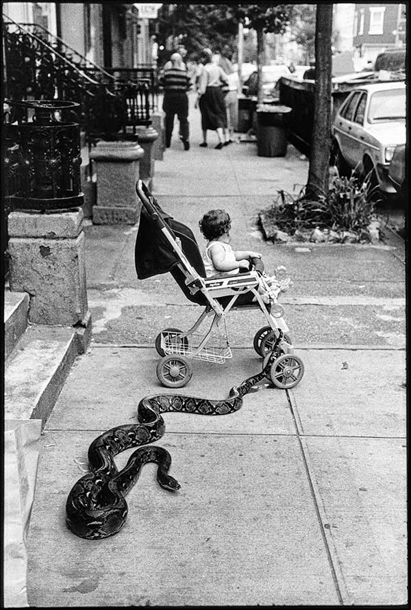 New York City, 1985, Leonard Freed