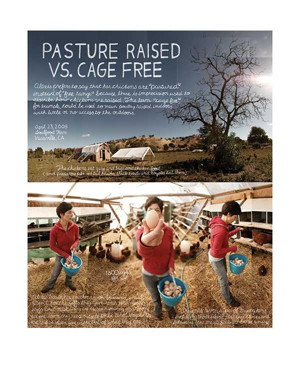 Pasture Raised Vs. Cage Free, Douglas Gayeton, photo collage, 2008