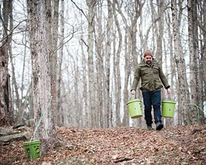 Peter Barrett with buckets of sap collected from trees in Lake Hill, outside Woodstock.