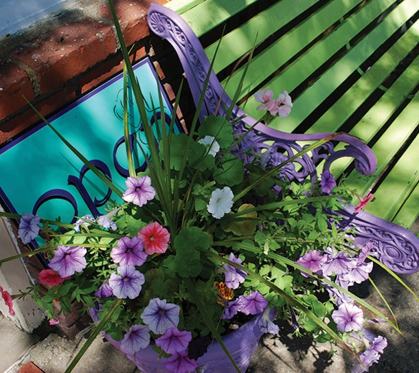 Petunias need to be deadheaded for compactness and optimum bloom.