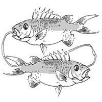 Pisces for February 2015