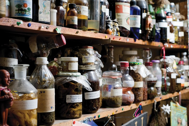 Preserved herbs on the shelves of Susun Weed's home. - JENNIFER MAY