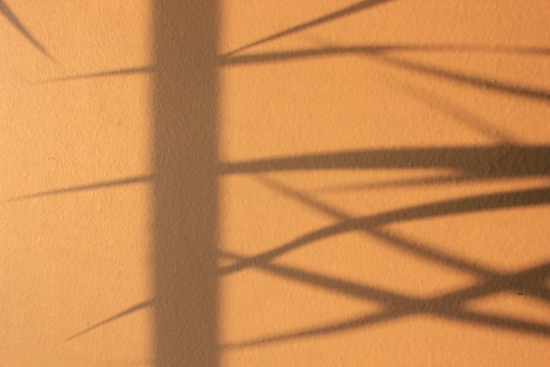 Projected shadows; photo by Amanda Painter.