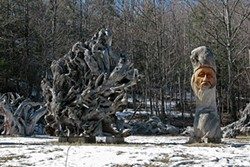 ERIC FRANCIS COPPOLINO - Sculpture by Jim Dowd made from redwood driftwood, on the Grandmother Land in High Falls.