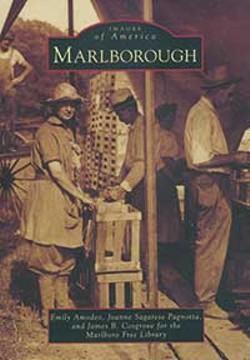 books--shorttakesmarlborough.jpg