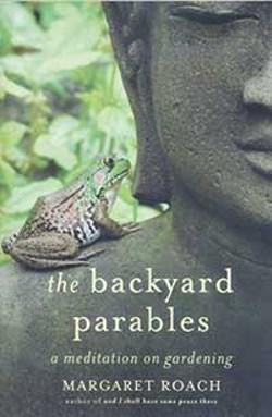 books--shorttakesbackyard.jpg