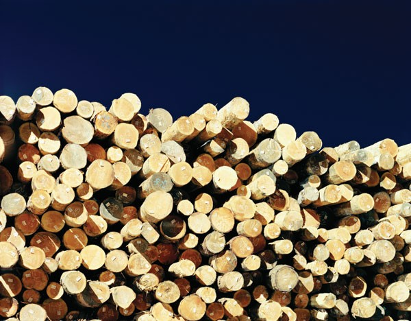 """Stacked logs in Weyerhaeuser sort yard, Cosmopolis, Washington, 2007."" Archival pigment print, Eirik Johnson, from the book Sawdust Mountain (Aperture, 2009)."