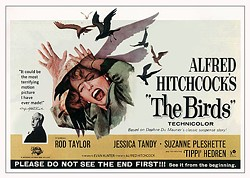 b01f2e5e_the_birds_horizontal_image_bethel_woods_527.jpg