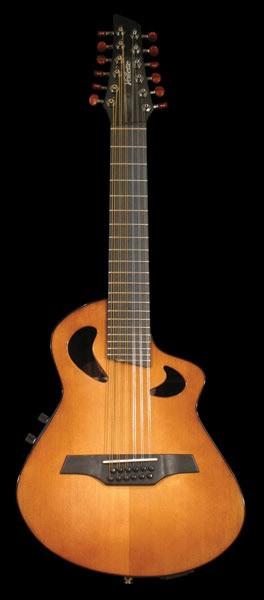sl--guitar.jpg
