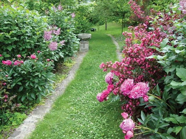 Thunder Lane, West Park, part of the Garden Conservancy Open Days tour.