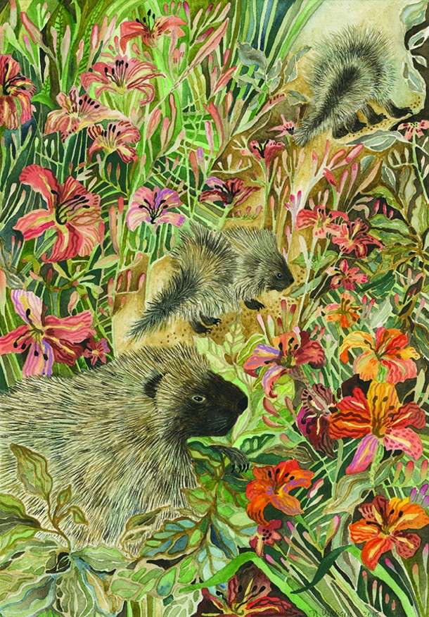 "Porcupines at the Mohonk Preserve, Natalie Wargin, watercolor, 7"" x 10"", 2015"