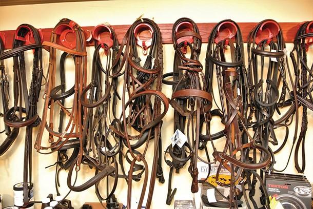 amenia-_8_---horse-leap.jpg