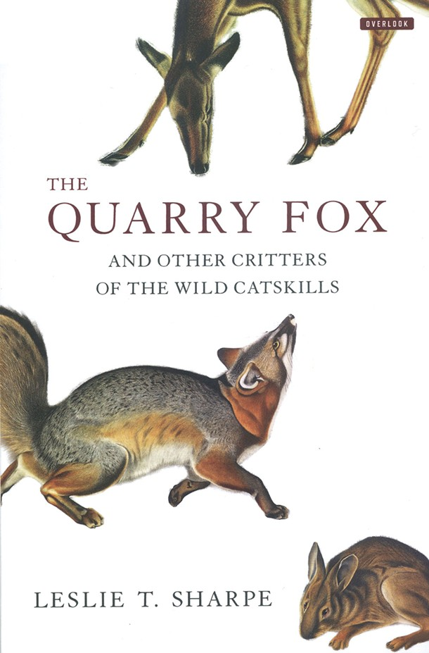 the-quarry-fox_sharpe.jpg