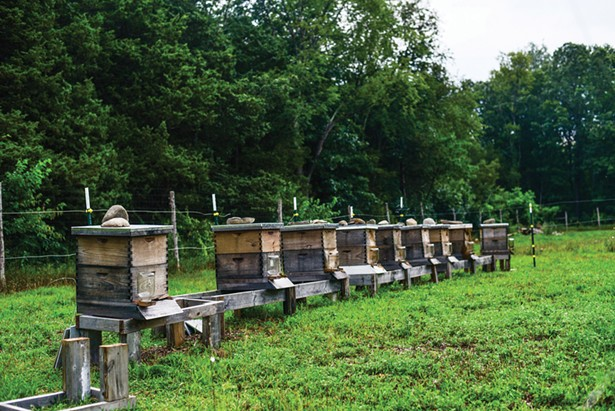 Arrowwood Farm Brewery in Accord raises its own bees and devotes 20 acres to experimental hop and grain farming.