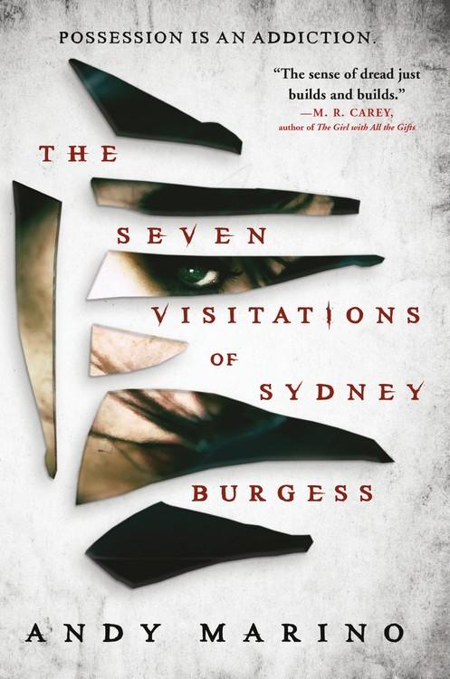 the_seven_visitations_of_sydney_burgess.jpg