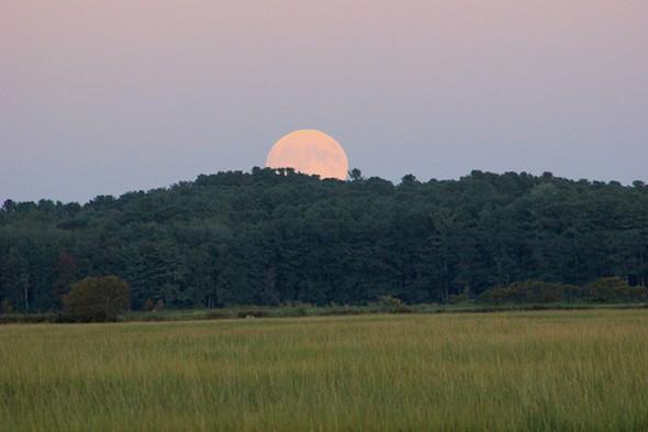 Perigee Aries Full Moon rising over Scarborough Marsh, Maine, September 27. - AMANDA PAINTER