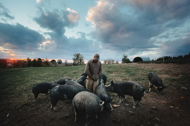 Still from The Last Pig.
