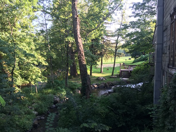The view from the patio. - MARIE DOYON