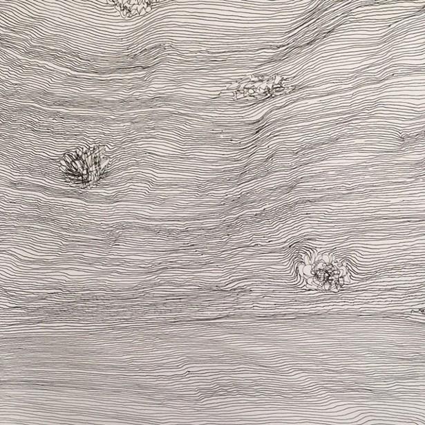 Line Study, Deborah Goldman, pen and ink, 2019.