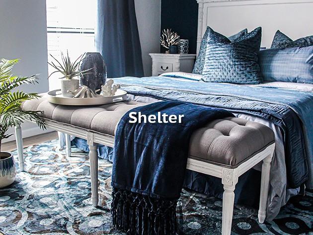Shelter Winners