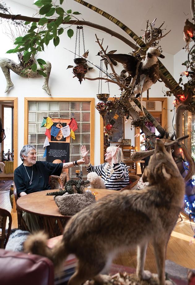 The Artful Life: A Video Artist & An Art Librarian in Zena Woods