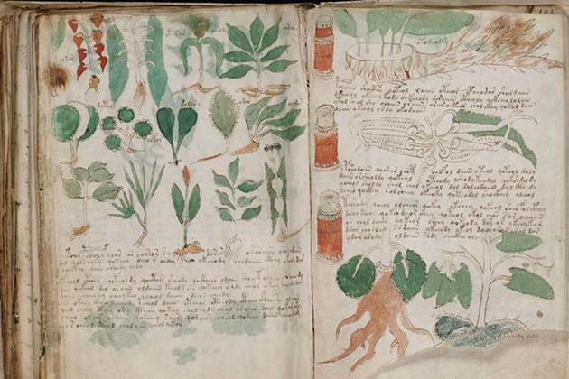 The Voynich Manuscript Deciphered   Mountainview Studios   November 4