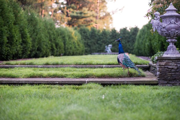 Countryside Calm: Spend a Relaxing Weekend in Amenia