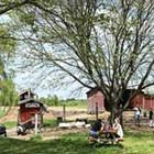 U-Pick Farm Spotlight: Greig Farm