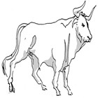 Taurus (April 19-May 20) for August 2015