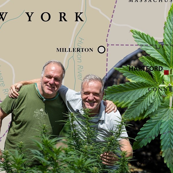 Michael and Paul Harney, founders of The Hemp Division