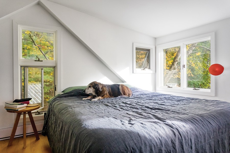 """Upton rests in the master bedroom. When Horowitz was in graduate school, she spent six months trying to come up with a research subject—often taking her dog to the dog park to play when she was feeling stuck. Then she realized her subject matter was literally right in front of her. """"I realized I should study dogs,"""" she remembers. """"It was hard to see, because dogs are thought to be so familiar—they're in our houses, they're in our beds, we feel we already know them."""" - WINONA BARTON-BALLENTINE"""