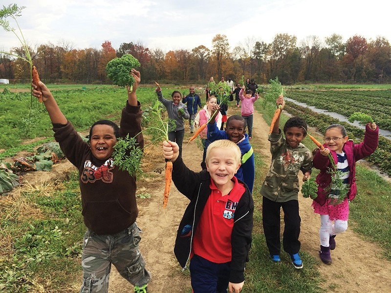 Students picking carrots at the Poughkeepsie Farm Project.